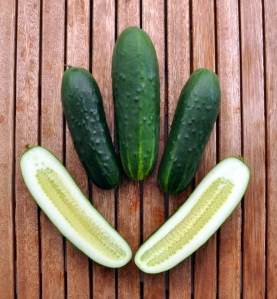 """""""You know, I do need cucumber research. I need to know if they stay crisp after I chop them into tiny pieces."""""""